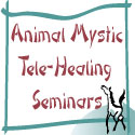 Animal Mystic Tele-healing Seminars